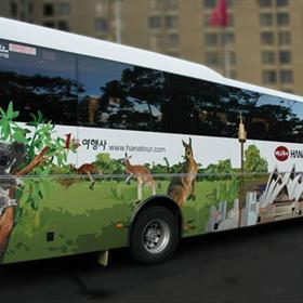 Bus and vehicle wrap