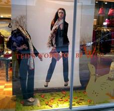 Shop front display