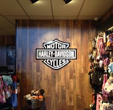 Acrylic logo mounted to timber feature wall